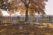 3rd Nov 2020 - LHG-0947-old headstones