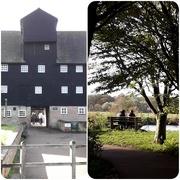 4th Nov 2020 - Houghton Mill