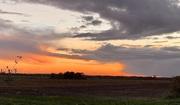 4th Nov 2020 - Evening Sky