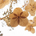 Little dried flowers by fayefaye
