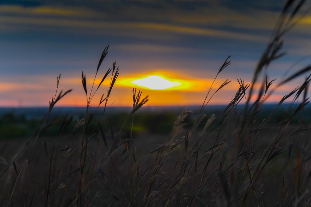 Funky Sunset by judyc57