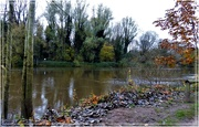 5th Nov 2020 - The swollen Severn at the Dale End Park
