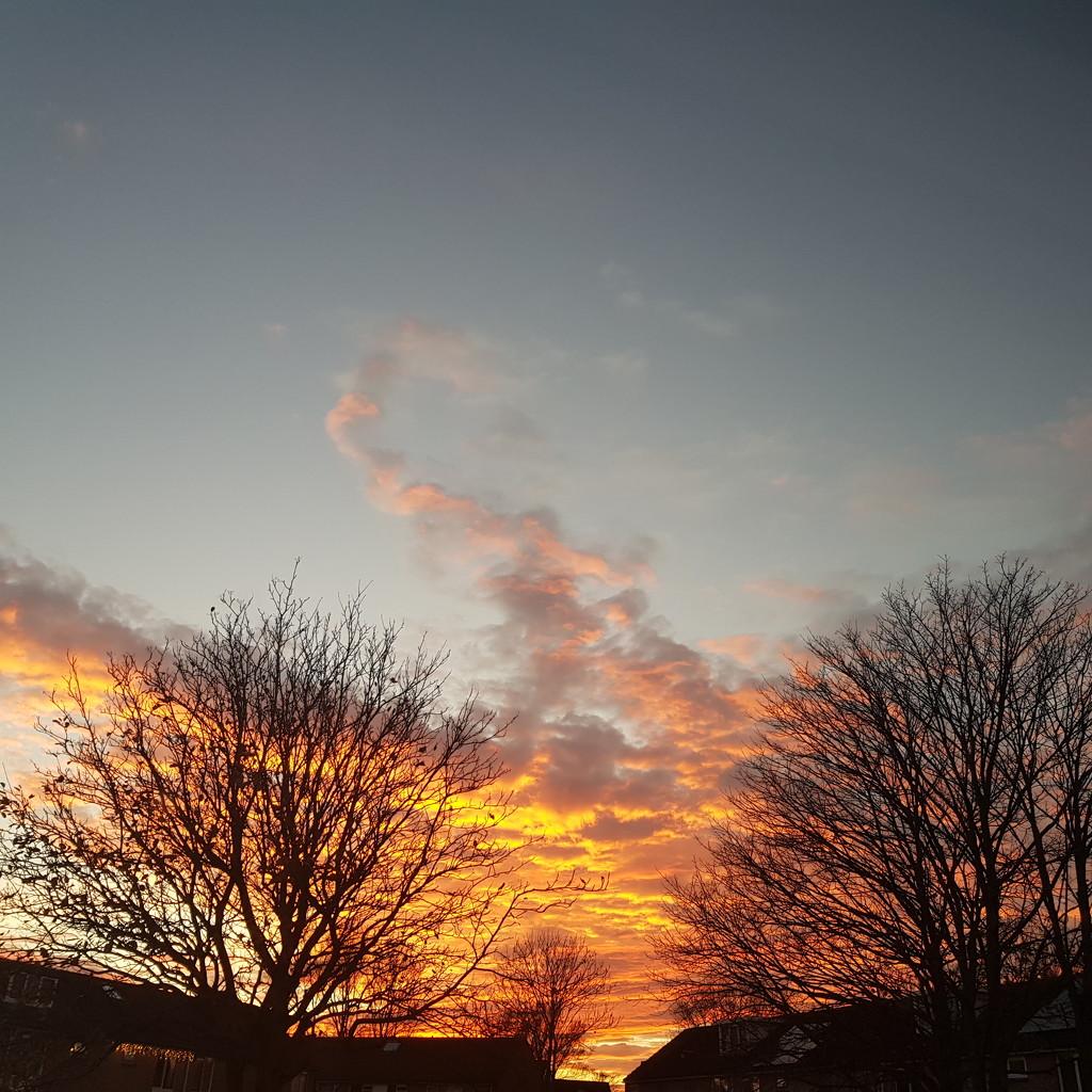 Golden sky in den helder by beefy2