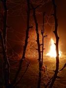 5th Nov 2020 - Bonfire light