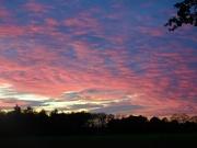 6th Nov 2020 - sunset