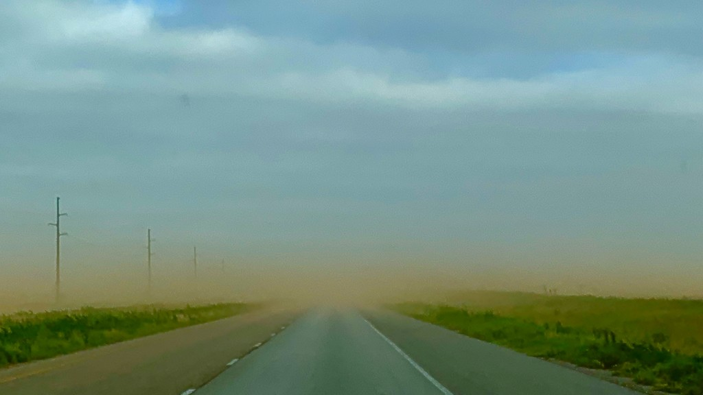 "A dust storm in ""The Big Empty""  by louannwarren"