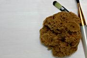 5th Nov 2020 - sponge and brushes