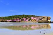 5th Nov 2020 - Our pink island