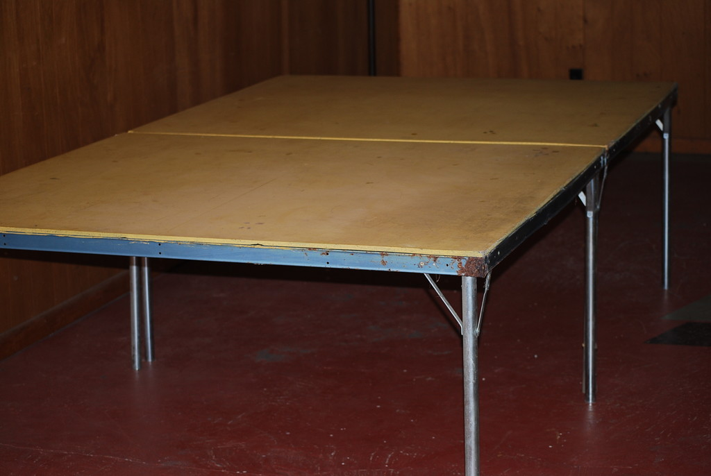 ping pong - used but repairable by stillmoments33