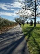 6th Nov 2020 - On a walk