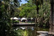 1st Nov 2020 - Garden Market