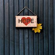 6th Nov 2020 - Hope