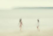 7th Nov 2020 - Beach Buddies