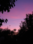 7th Nov 2020 - Evening sky