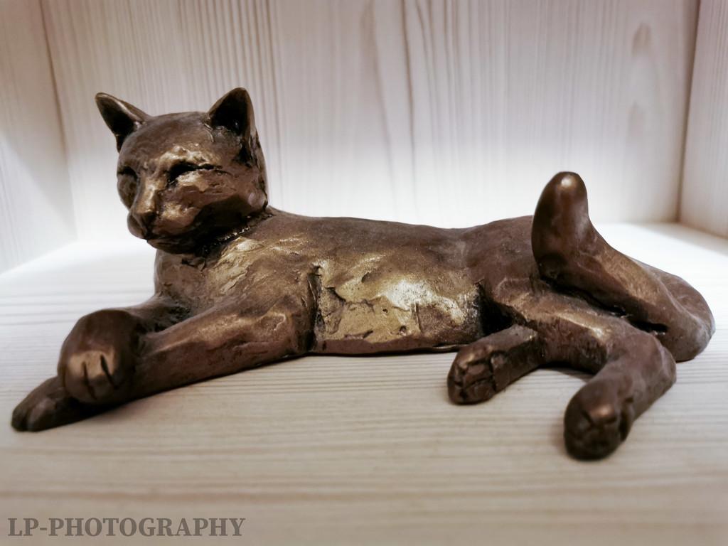 Relaxing Cat  by tiredpanda