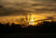 7th Nov 2020 - Sunset...