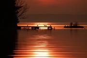 7th Nov 2020 - Sunrise this Morning