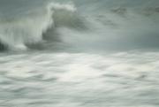 8th Nov 2020 - Wild Wave