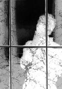 4th Nov 2020 -  My Shadow Reflection