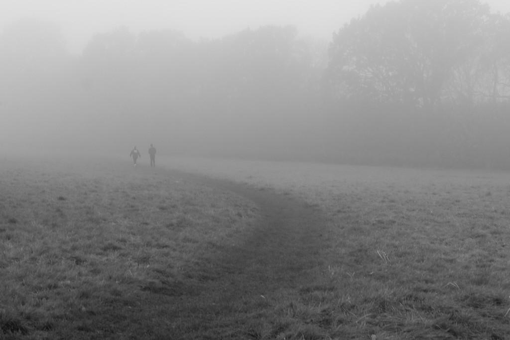 Walking into winter by rumpelstiltskin