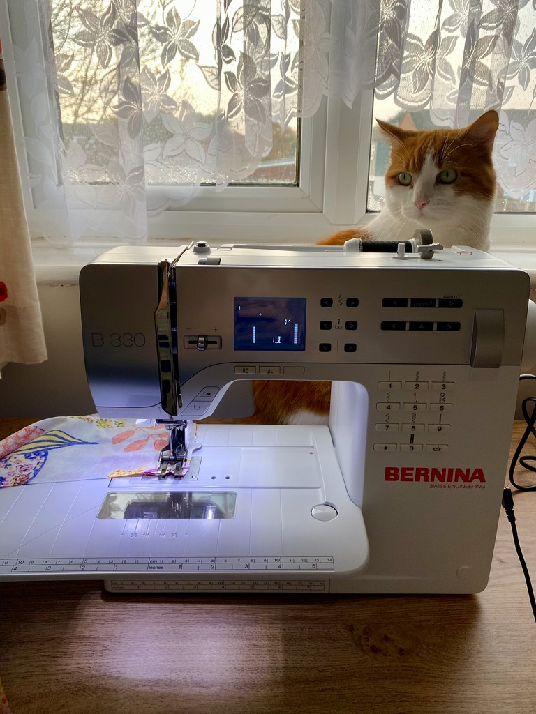 Sewing Assistant by gillian1912