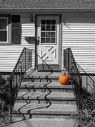 8th Oct 2020 - Pumpkin