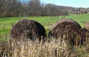 9th Nov 2020 - Bales of hay