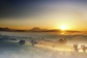 9th Nov 2020 - 2020-11-09 over the fog line