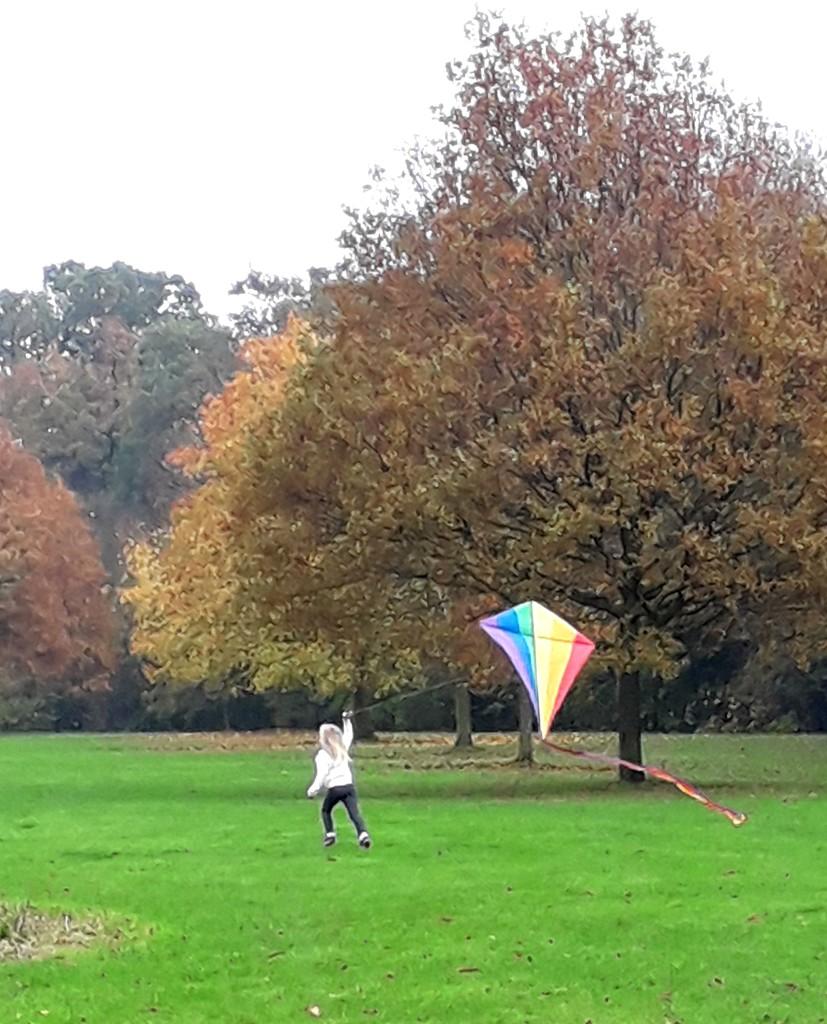 Love my kite! by mave