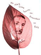 8th Nov 2020 - Ungaretti's leaves
