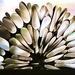 Paper Folding by carole_sandford