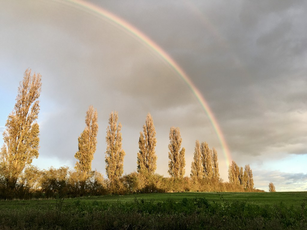 Somewhere over the rainbow by helenmoss