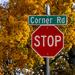Corner Road by k9photo