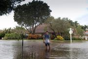 9th Nov 2020 - A little bit too much rainfall.