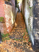 9th Nov 2020 - Autumn in the Alleys