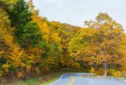 10th Nov 2020 - Shenandoah Roadway