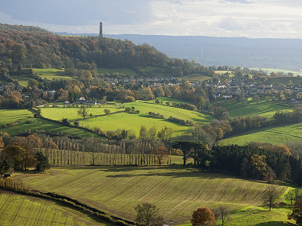 Tyndale Monument from Stinchcombe Hill by jaffacake