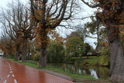 10th Nov 2020 - the old historic canal