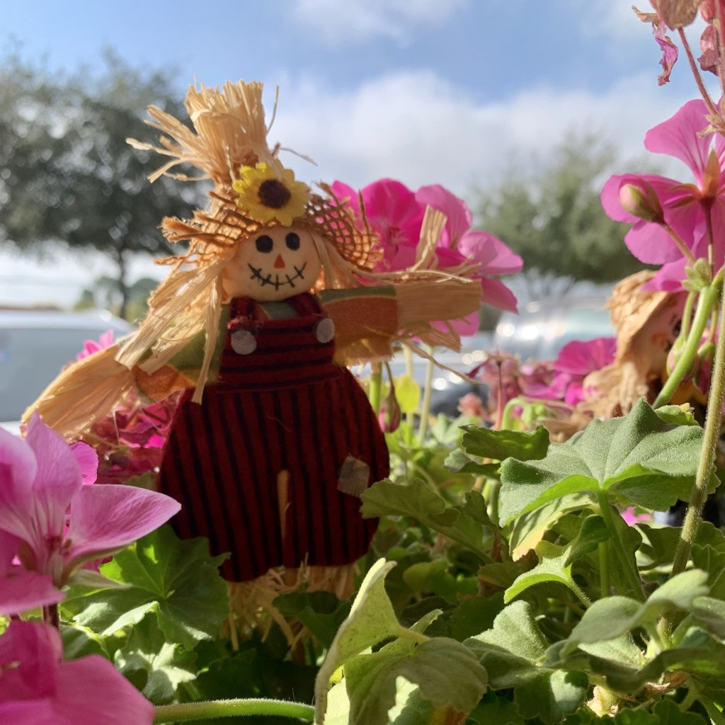 Scarecrows and geraniums by louannwarren
