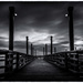 Fishing Pier, Fraser River by cdcook48