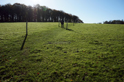 4th Nov 2020 - 4th Nov Walk at Hinton Ampner