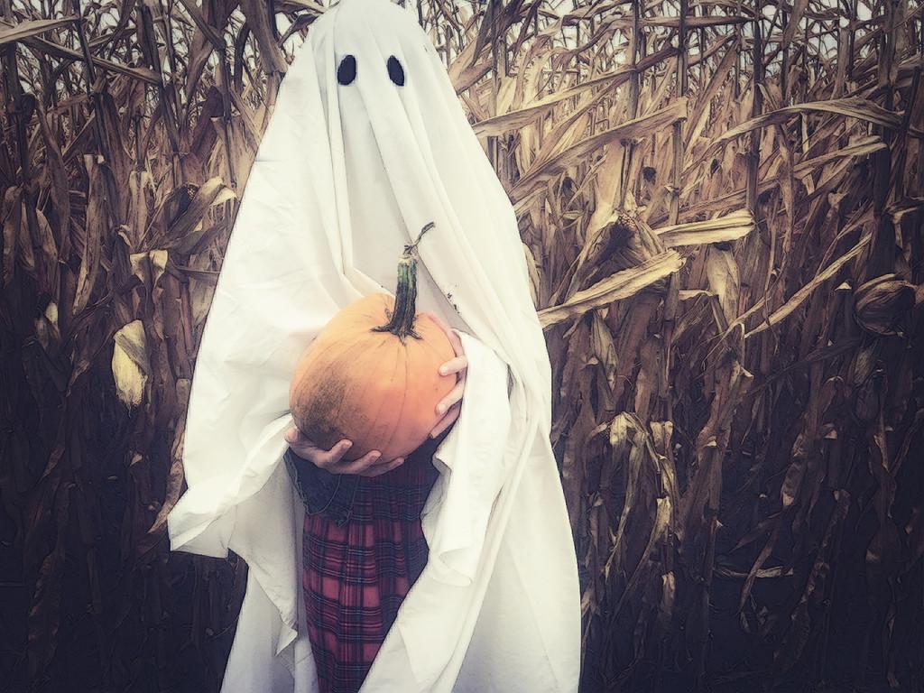 Pumpkin Ghost by edie
