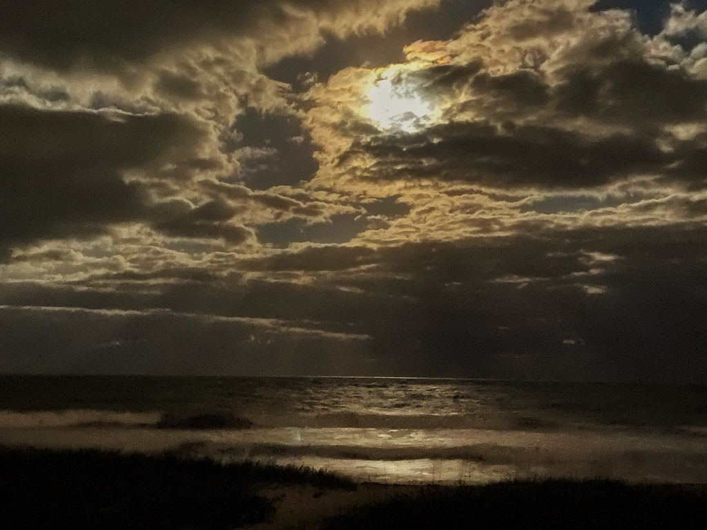Hutchinson Island moonlight  by joesweet