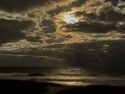 3rd Nov 2020 - Hutchinson Island moonlight