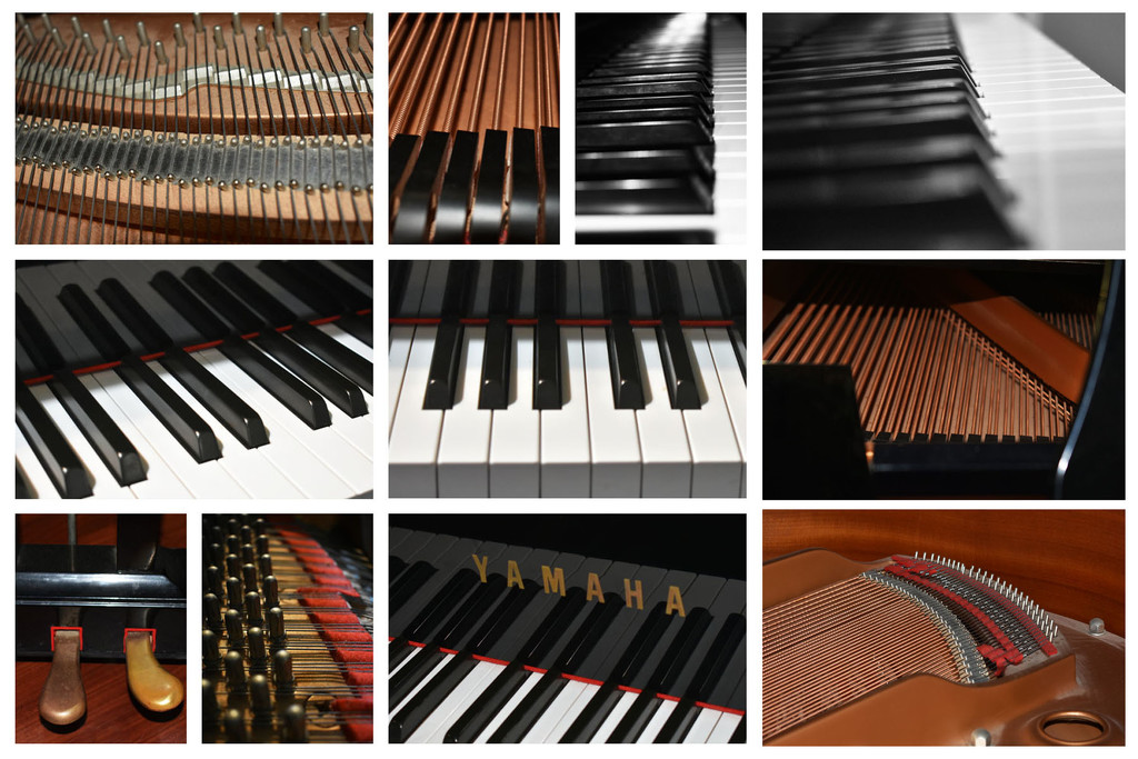 Parts of a Piano by homeschoolmom