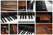 11th Nov 2020 - Parts of a Piano