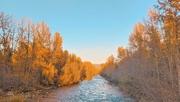 6th Nov 2020 - At The Creek