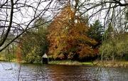 12th Nov 2020 - Colour Across the Lake