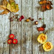 12th Nov 2020 - Autumn flatlay