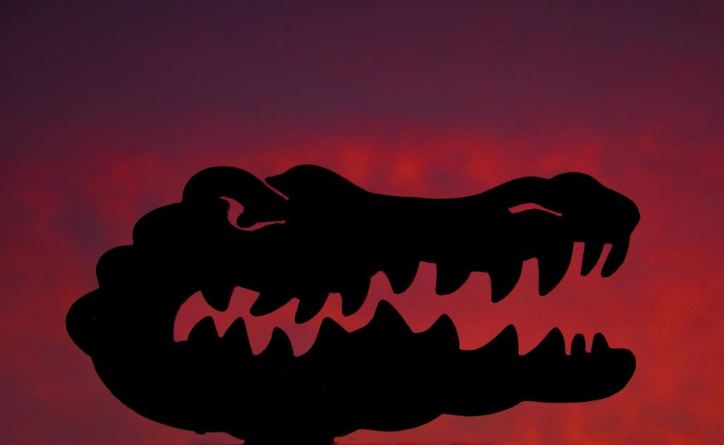Post TS Eta sunset by danette